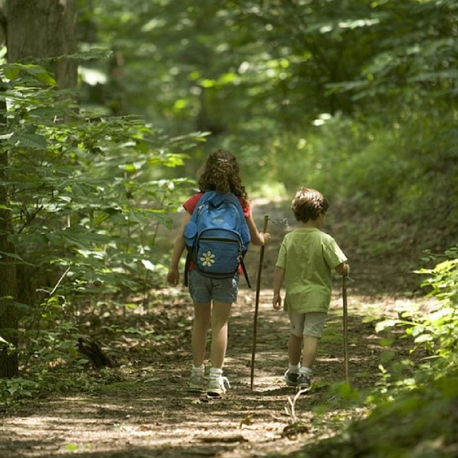 Image result for Nature-Deprived: Fun Outdoor Activities to do With Your Kids