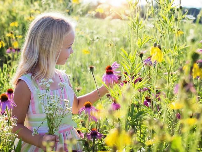 nature best teacher