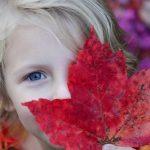 Fun Fall Activities to Make Family Memories